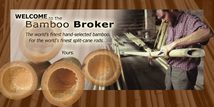 The Bamboo Broker
